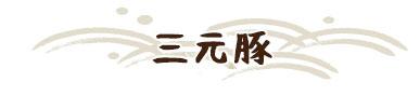 katsufuku_m02